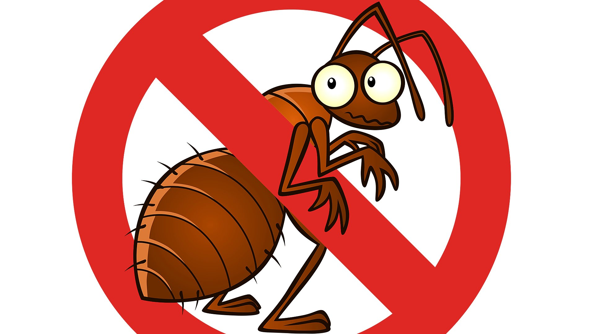 Do You Have a Social Pest in Your Life?