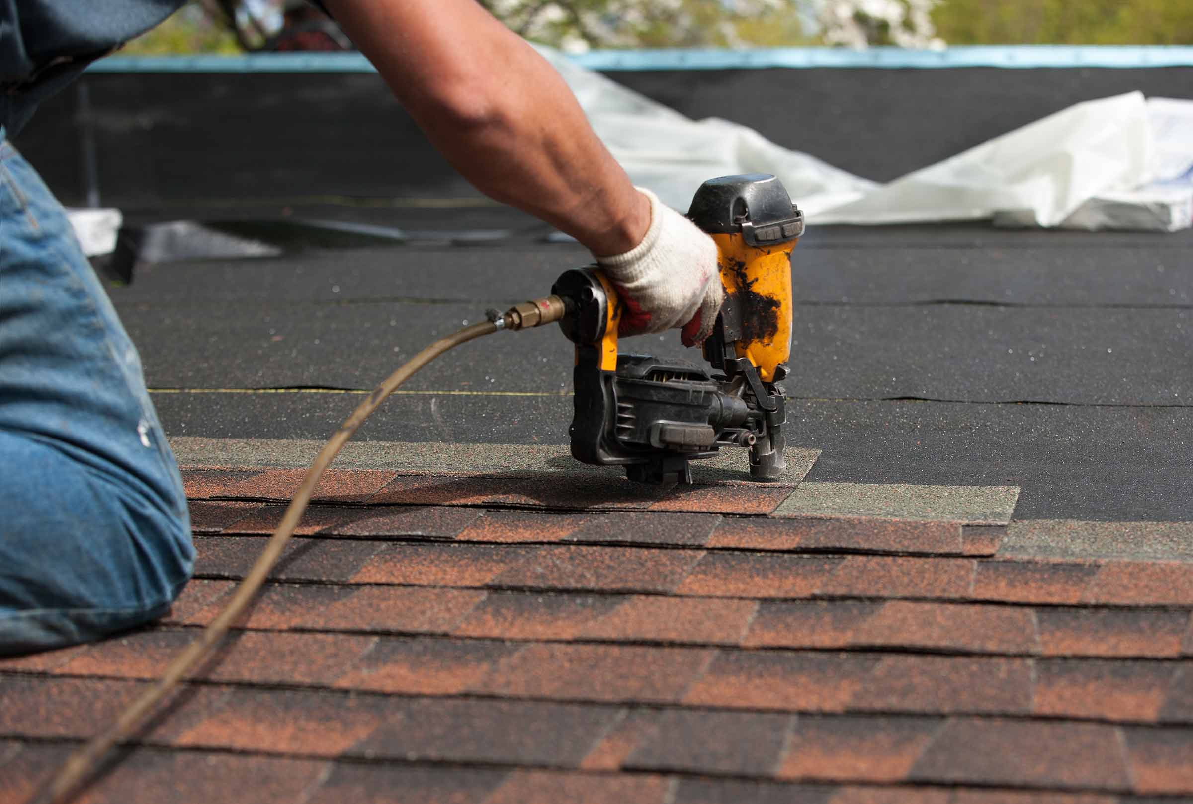 Lichen Removing With Skilled Roof Cleansing Process