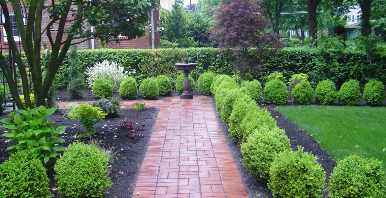 Unique Succulent Plant Gardening Ideas