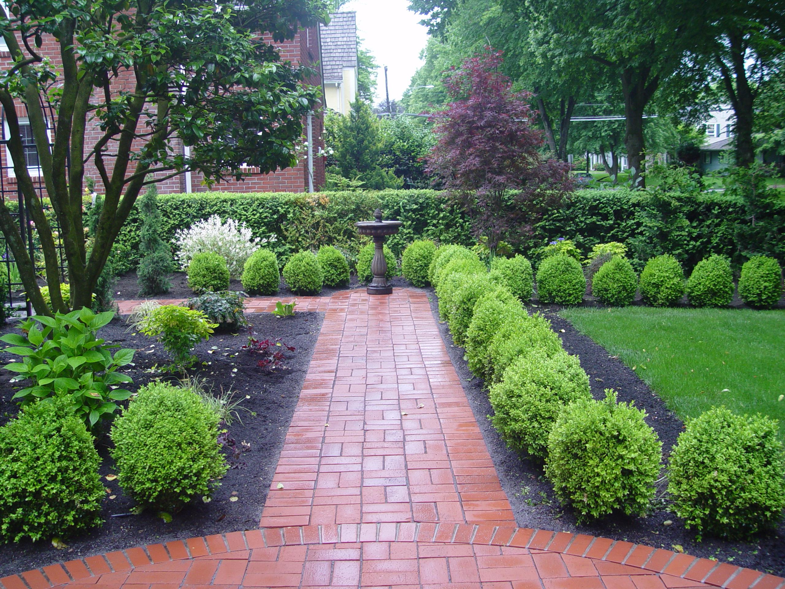 Distinctive Succulent Plant Gardening Concepts