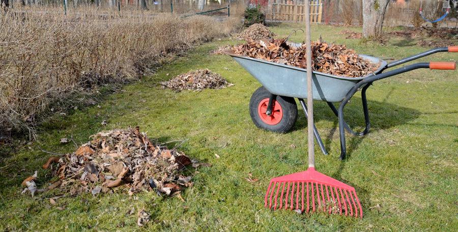Skip bins to keep your garden clean
