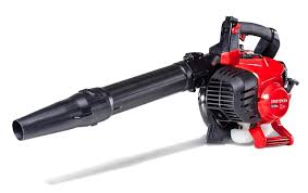 Before you buy a leaf blower you should check