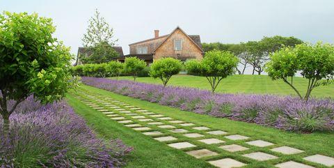 5 amazing ideas for your unique landscaping designs