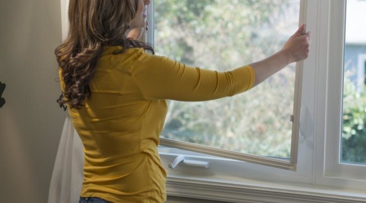 What are the benefits of removing window screens in winter?